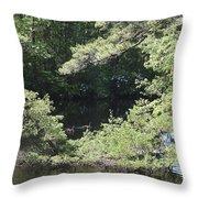 Pine Lake 391 Throw Pillow