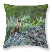 Pine Marten With Attitude Throw Pillow