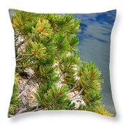 Pine Needles Over Water Throw Pillow