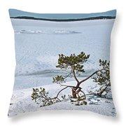 Pine On A Rock Throw Pillow