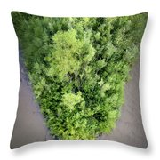 Pine River Island Throw Pillow by Mary Lee Dereske