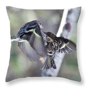 Pine Siskins Fighting 6829 Throw Pillow