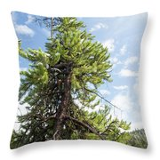Pine Tree Alive Throw Pillow