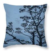 Pine Tree Antigua Guatemala Throw Pillow