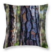 Pine Tree Bark Throw Pillow