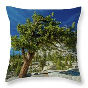 Pine Tree In Yosemite Throw Pillow
