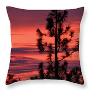 Pine Tree Sunrise Throw Pillow