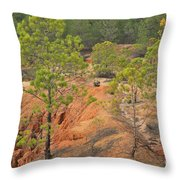 Pine Trees And Forest Throw Pillow