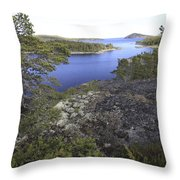 Pine Trees At The Coast Throw Pillow