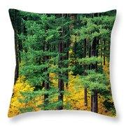 Pine Trees In Autumn Throw Pillow