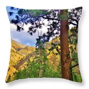 Pine Trees Throw Pillow
