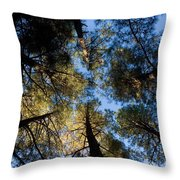 Pine Trees Near Ruidoso Nm Throw Pillow