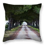 Pine Trees Vendres Throw Pillow