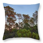Pine Trees Waiting For Twilight Throw Pillow