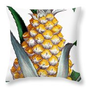 Pineapple, 1789 Throw Pillow