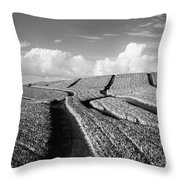 Pineapple Field - Bw Throw Pillow