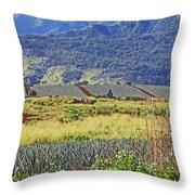 Pineapple Fields Throw Pillow