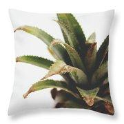 Pineapple Top- Art By Linda Woods Throw Pillow