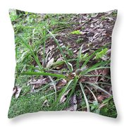 Pineapples Growing In The Woods Throw Pillow