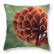 Pinecone-2 Throw Pillow