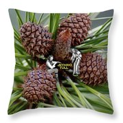 Pinecone Rock 1 Throw Pillow