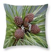 Pinecone Tull Throw Pillow