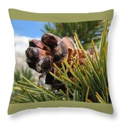 Pinecone With Dripping Sap  Throw Pillow