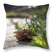 Pinecones And Wild Onions  Throw Pillow