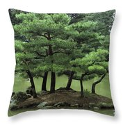 Pines On Island In The Gardens Throw Pillow