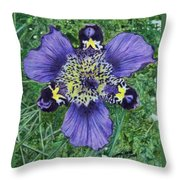 Pinewoods Lily Throw Pillow