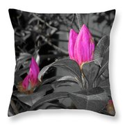 Pink-1 Throw Pillow