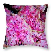 Pink Caladium Throw Pillow