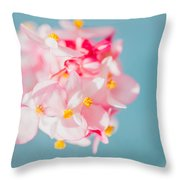 Pink And Baby Blue Throw Pillow