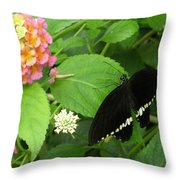 Pink And Black In The Garden Throw Pillow