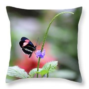 Pink And Blue Butterfly Throw Pillow