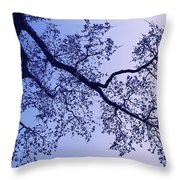 Pink And Blues Throw Pillow
