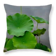 Pink And Green On Grey Throw Pillow