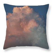 Pink And Grey Throw Pillow