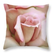 Pink And Ivory Rose Portrait Throw Pillow