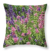 Pink And Lavender Throw Pillow
