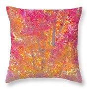 Pink And Orange Autumn 2 Throw Pillow