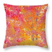 Pink And Orange Autumn Throw Pillow