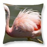 Pink And Proud Throw Pillow