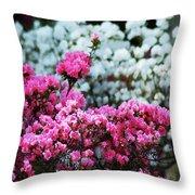 Pink And White Azelas Throw Pillow
