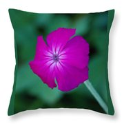 Pink And White Flower Throw Pillow