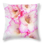 Pink And White Gladiola Throw Pillow
