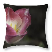 Pink And White Tulip 04 Throw Pillow