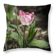 Pink And White Tulip Squared Throw Pillow