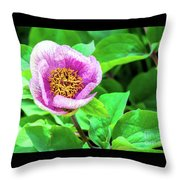 Pink And Yellow Flower Throw Pillow