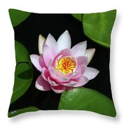 Pink And Yellow Lotus Waterlily Throw Pillow